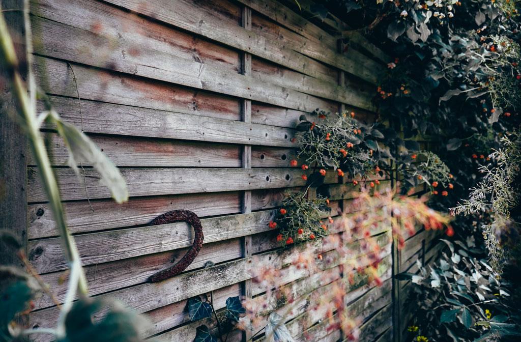Vier tips om je tuin klaar te maken voor de zomer!