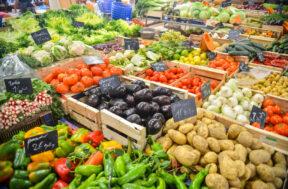 Welke groenten kun je stomen?